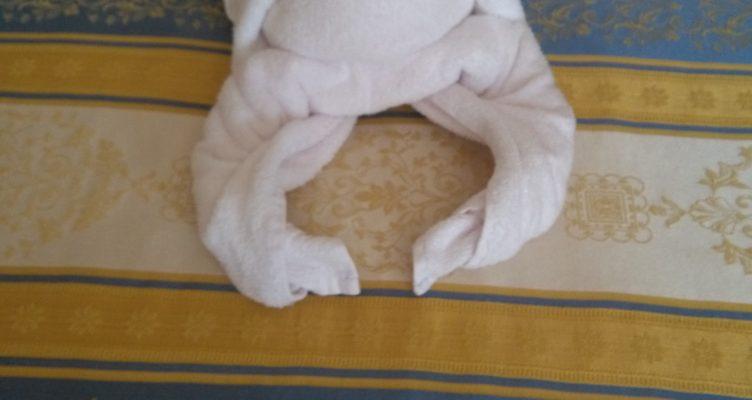 Come fare un'aragosta con gli asciugamani