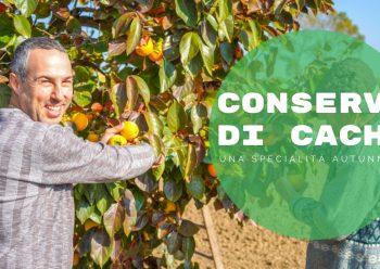 """La campagna in autunno? In tre parole: """"Conserva di Cachi""""."""